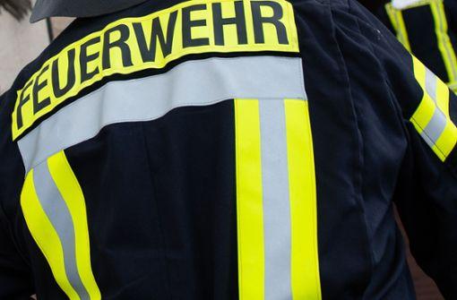 Beim Eintreffen der Feuerwehrleute stand das Gebäude bereits in Flammen. (Symbolbild) Foto: dpa