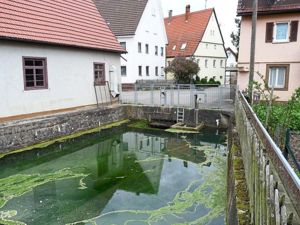 Gechingen