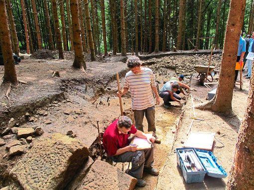 Das Foto zeigt Ausgrabungen aus dem Jahr 2010. Foto: SB-Archiv