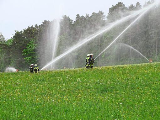 Aufgrund des vorherrschenden Wasserdrucks an den Entnahmestellen musste die Anzahl eingesetzter Strahlrohre für das Löschen reduziert werden. Foto: Schwarzwälder Bote