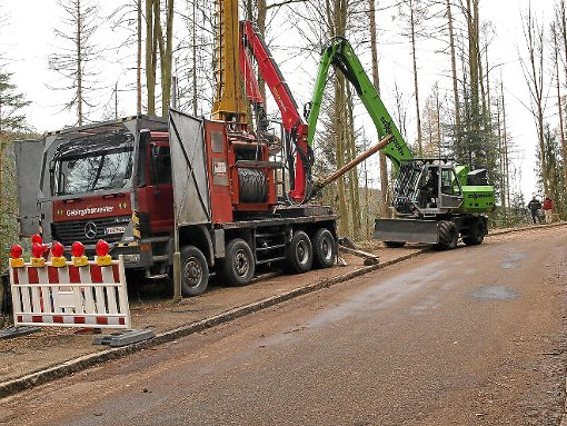 Bei der Durchforstung im Bereich der Marienruhe waren ein großer Seilkran und ein Radbagger eines österreichischen Forstunternehmens im Einsatz. Foto: Ziegelbauer
