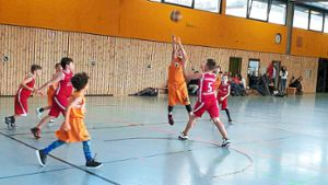 Basketball: Young Panthers erreichen die Endrunde