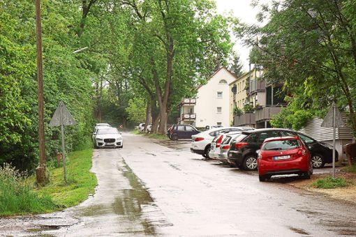 Der Bauausschuss des Hechinger Gemeinderats hat über die Neugestaltung der Tübinger Straße gesprochen. Vor allem der Gehweg in der Kurve wurde diskutiert.   Foto: Stopper Foto: Schwarzwälder Bote