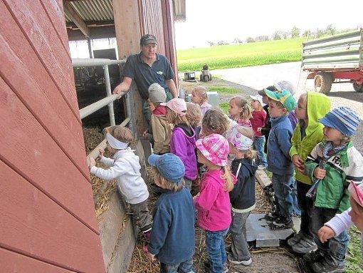 Auch auf dem Bauernhof waren die Kinder zu Gast und erfuhren dabei viel.  Foto: Kindergarten Betra Foto: Schwarzwälder-Bote