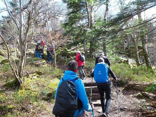 Das Forstamt hat den Wanderweg zum Verlobungsfelsen gesperrt. (Symbolbild) Foto: Schwarzwaldverein