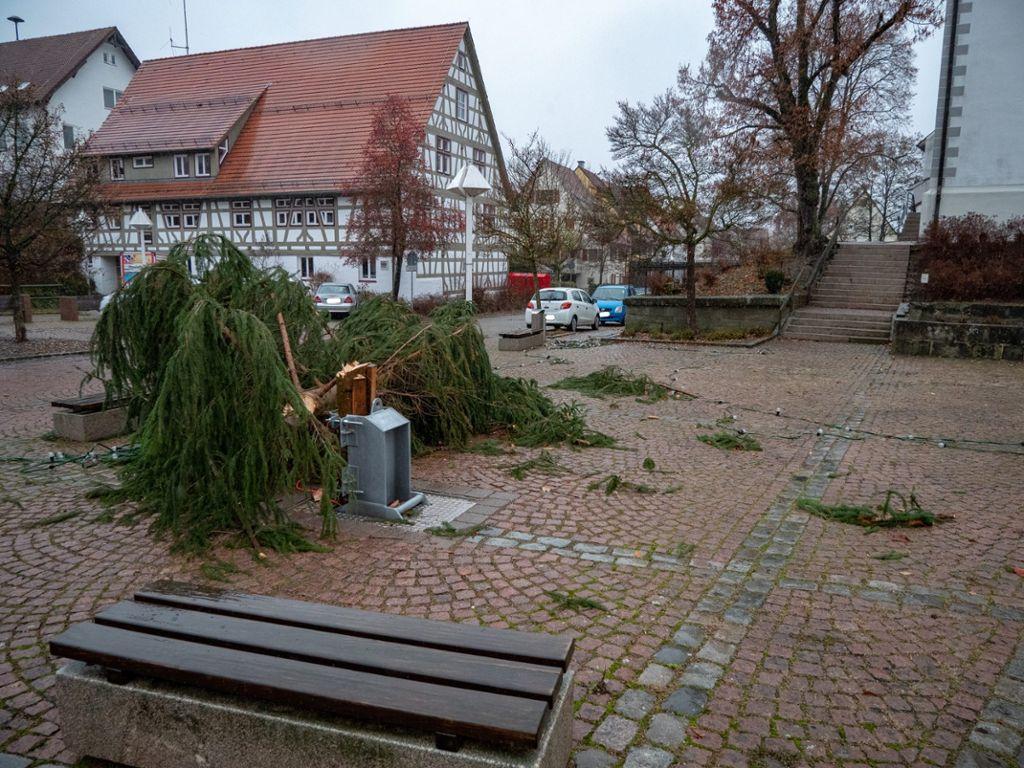 Vöhringen: Weihnachtsbaum Gefällt: Täter Ermittelt