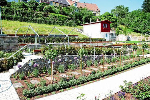 Ein  großer Teil der Kosten für den Rosen- und Skulpturengarten  ist aus dem Landessanierungsprogramm gekommen.    Archivfoto: Hertle Foto: Schwarzwälder Bote