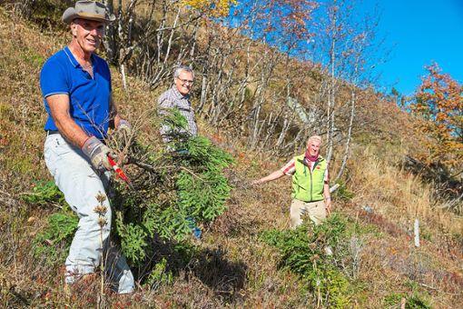 Der Schwarzwaldverein ist   auch aktiv in der Pflege der Kulturlandschaft.   Foto: Verein Foto: Schwarzwälder Bote