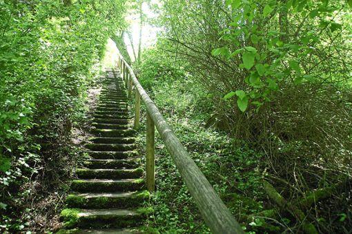 Von der Pfingsthalde führt diese sanierungsbedürftige Treppe zum Rote-Halde-Weg.  Foto: Hertle Foto: Schwarzwälder Bote