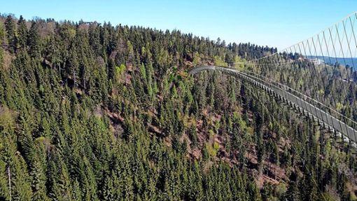 So soll sich die Hängebrücke in Bad Wildbad über das Tal spannen. Links oben ist im Hintergrund der Turm des Baumwipfelpfades zu sehen. Foto: Wild Line