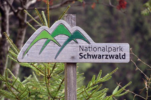 Bei Seebach am Ruhestein steht das Besucher- und Informationszentrum des Nationalparks Schwarzwald. Jetzt wird das fünfjährige Bestehen des Nationalparks gefeiert.  Foto: dpa