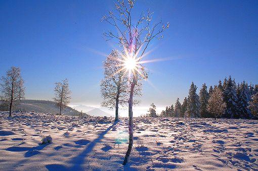 Die Folgen des heftigen Wintereinbruchs sind auch diese Woche noch spürbar. Foto: Schwark