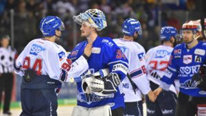 Eishockey: Wild Wings: Kein erneuter Derby-Coup