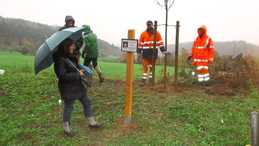 Nagold: Ein Apfelbaum zum Gedenken - Nagold - Schwarzwälder Bote