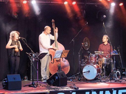 Mit Sängerin Lucia Pulido, Bassist Juan Pablo Balcazar und Drummer Juan Rodriguez Berbin war am Samstagabend im Innenhof-Festival Latin-Folk zu hören.  Foto: Trenkle Foto: Schwarzwälder Bote