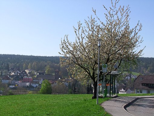 Schömberg ist Deutschlands erste und einzige Glücksgemeinde.  Foto: Kugel