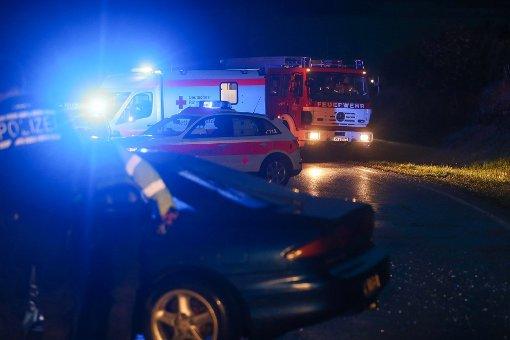 Bei der Kollision mit einem Auto ist am Wochenende auf der A 81 ein Pferd getötet worden. (Symbolfoto) Foto: Marc Eich