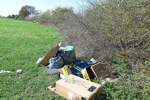 Jede Menge Müll und Fäkalien hat eine große Gruppe von Landfahrern am Vorderen Stallberg in Villingen-Schwenningen hinterlassen.       Foto: Kaletta