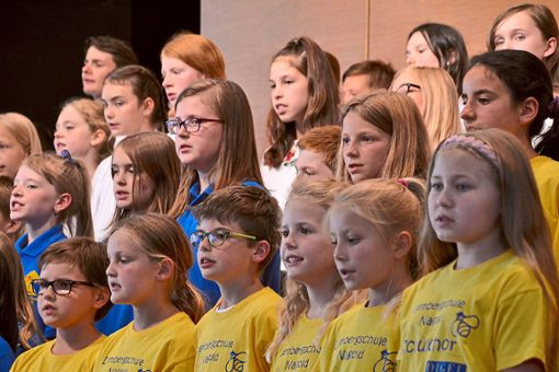 Ein gemeinsames Konzert gestalteten Grundschulchöre und  Bläserklassen mit den Unterstufenchören des OHG.  Foto: Kunert Foto: Schwarzwälder Bote
