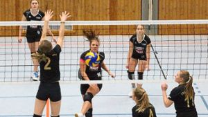 Volleyball: Mit Platz vier in die Winterpause