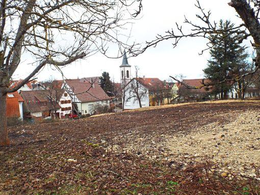 Bis zu zwölf Wohneinheiten können auf dem Gelände an der Kaffeebühlstraße entstehen.   Archiv-Foto: Visel Foto: Schwarzwälder Bote