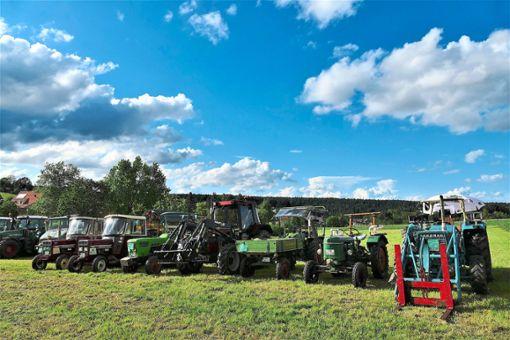 Beim Kohlenmeiler-Fest waren auch rund 70 Traktoren zu sehen.   Fotos: Judith Ketterle Foto: Schwarzwälder Bote