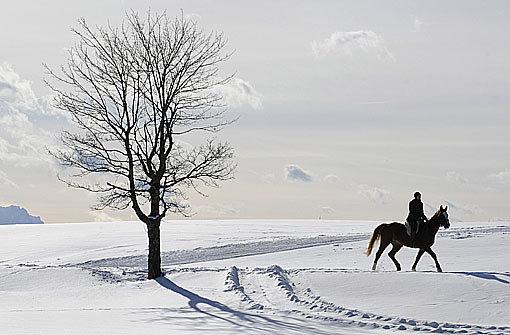 In weiten Teilen Deutschlands hat es wieder ordentlich geschneit. Foto: AP
