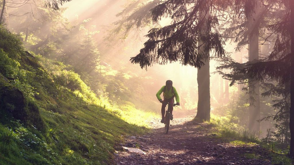 Mountainbike: Black Forest Ultra Bike Marathon abgesagt - Schwarzwälder Bote