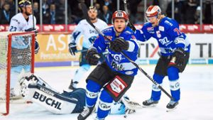 Eishockey: Wild Wings: Et Voilá Anthony Rech