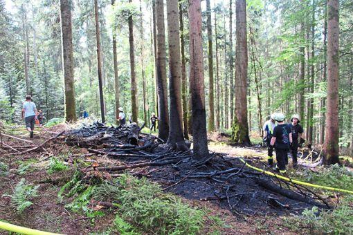 Die Brandstifter hatten auf zwei Flächen Reisig angezündet. Nun ermittelt die Polizei. Foto: Weis