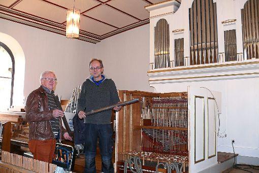 Rainer Heinz (links) und Ralph Krauter zeigen die  frisch geputzten Orgelpfeifen.  Foto: Werthenbach