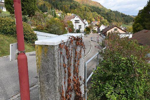 Der Verteilerkasten (KVZ) in der Toggenburgstraße: Die Telekom lässt die Stadt Horb nicht an ihren KVZ, um für schnelles Internet zu sorgen.  Foto: Hopp Foto: Schwarzwälder-Bote