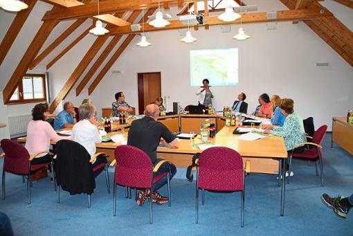 Bürgermeisterin Monique Adrian erläutert in der Sitzung des Gemeinderats, um welche Fläche der Plettenberg-Steinbruch erweitert werden soll.  Foto: Visel
