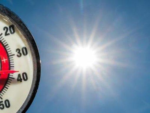 Der Region steht eine Hitzewelle bevor (Symbolfoto). Foto: Pleul