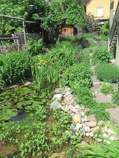 Wildblumen und kleine Wasserflächen bereichern laut Referentin Doris Deppe den Hausgarten.  Foto: Deppe Foto: Schwarzwälder Bote