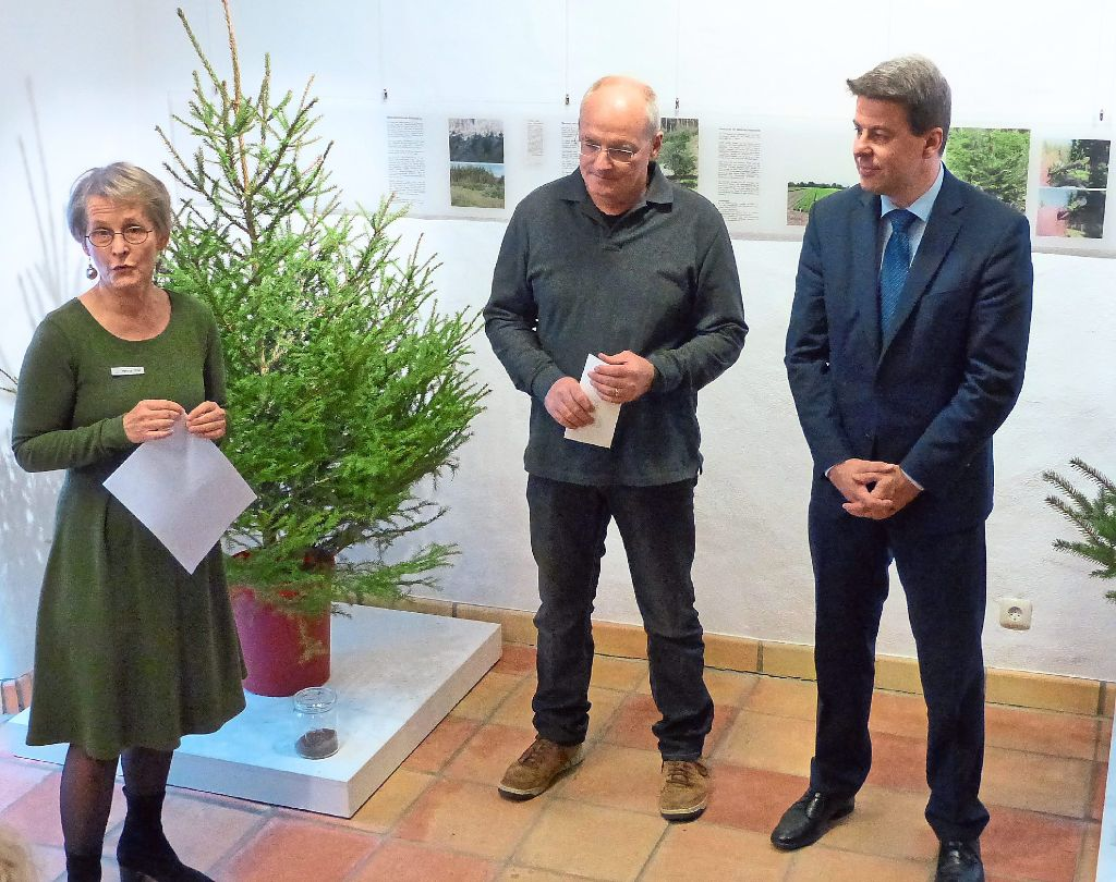 Grüne Gurke Im Weihnachtsbaum.Nagold Grüne Gurke Am Christbaum Nagold Schwarzwälder Bote