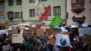 Fridays for Future: Blog: So demonstrieren die Schüler in der Region