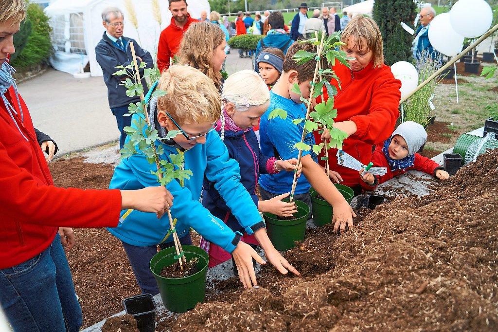 baum pflanzen leicht gemacht speziell f r kinder war beim landschaftspflegetag in erlaheim. Black Bedroom Furniture Sets. Home Design Ideas